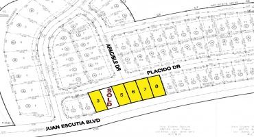 Placido Dr,Laredo,Texas,Residential,Placido Dr,10000020109
